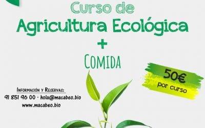 Curso Básico de Eco Huerto Familiar