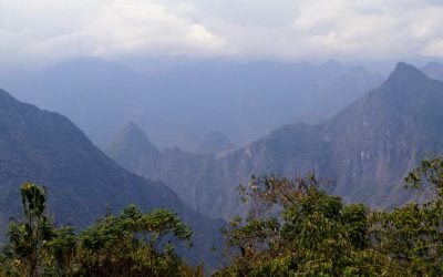 Diario de un botánico enamorado: Camino de Machu Picchu