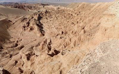 Diario de un botánico enamorado: Atacama Chile. En busca de la vida en condiciones extremas