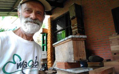 Diario de un botánico enamorado: Colmenas