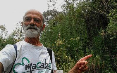 Diario de un botánico enamorado: Parque de Helechos